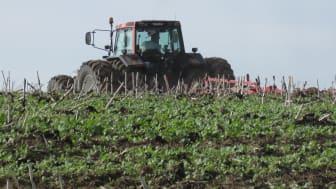 Traktor på åkermark.
