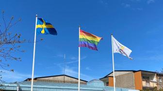 Moderaterna föreslår ny styrelseordförande för GotlandsHem