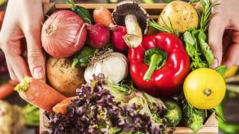 Livsmedelsproduktion ska öka – både i Dalarna och i Sverige