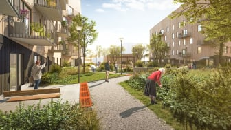Det trygghetsboende som Sveafastigheter bygger på Öster Mälarstrand består av fyra huskroppar med en innergård avsedd för odling och gemenskap.