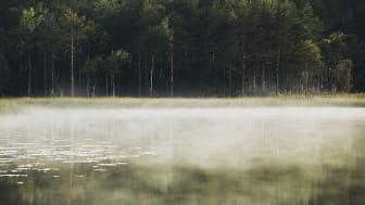 Miljöbedömningsmodell för läkemedel kan styra mot grönare alternativ