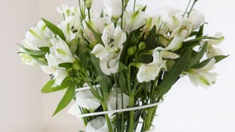 Flower Spring - Ett snyggt och dekorativt bukettstöd