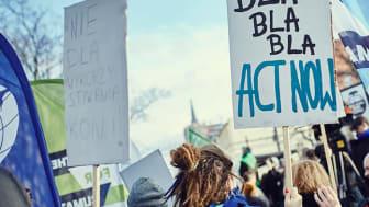 Strejker for klimaet vil finde sted landet over i morgen og næste uge. På tirsdag protesterer Verdens Skove mod den skovfældende kødindustri. Foto: Arkiv