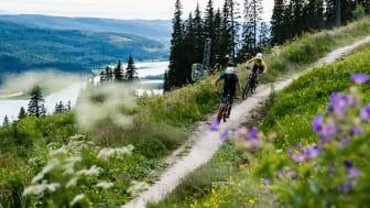Åre XC cykling