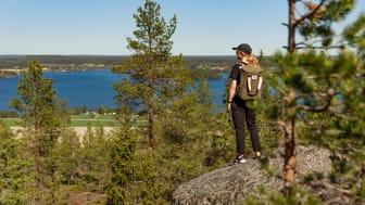 Vandra upp till tio av de bästa bergen, eller topparna, i Tavelsjö. De bjuder på olika upplevelser, olika svårighetsgrad och olika vyer.