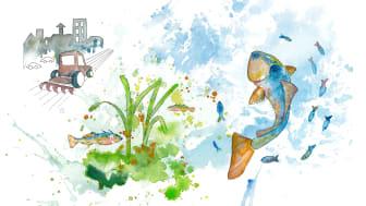 Visste du att en del vatten är övergödd medan andra svälter, www.sverigesvattenmiljö.se
