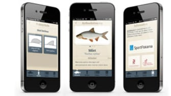 Bli en fena på fiskarter med sommarens smartaste app!