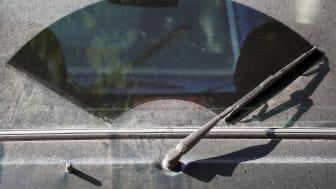 Biltvätt på gatan kostar miljön 4 miljarder årligen
