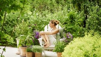 SOMMERTID I HAGEN: Plantasjens erfarne gartner, Hans Jensen, deler tips til hvordan holde hagen frodig med enkle grep, slik at du kan kose deg maksimalt i ferien. Foto: Plantasjen