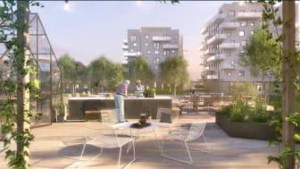 hofs park-innergård