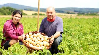 Anastasia Rempel und Frank Radu zeigen auf dem Acker bei Jesberg die ersten Richeröder Frühkartoffeln dieser Saison. Ihre besonders zarte Schale und der intensive Geschmack zeichnen die festkochenden Kartoffeln der Sorte Anuschka aus.