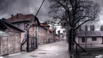 Ensi-ilta H2-kanavalla: The Unseen Holocaust