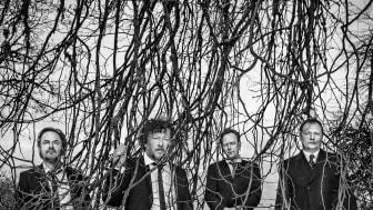 Weeping Willows live på Fotografiska i Stockholm den 4-7 november