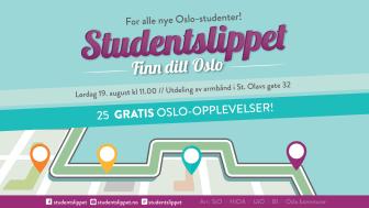 Grafikk Studentslippet 2017