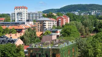 D36 -  Green House, Element Arkitekter AS_