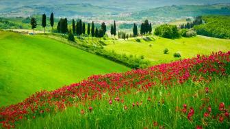 Toscana - ett klassiskt resmål för TEMA.