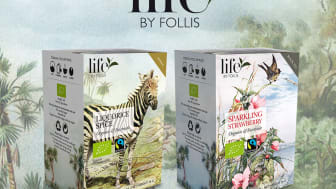 Life by Follis