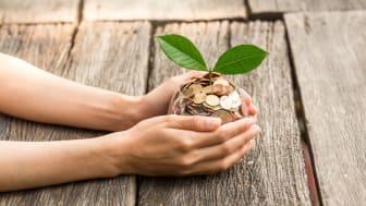 Hur lär man ut hållbarhet i en skola för hospitality?
