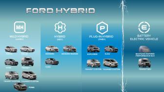 Ford Hybrid portolio