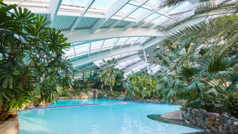 The Subtropical Swimming Paradise at Center Parcs Longleat Forest