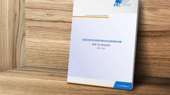 Im Zentrum des Hochschulentwicklungsplans stehen vier Handlungsfelder, die als strategische Zielsetzungen formuliert wurden: Professionalisierung, Digitalisierung, Internationalisierung und Flexibilisierung.
