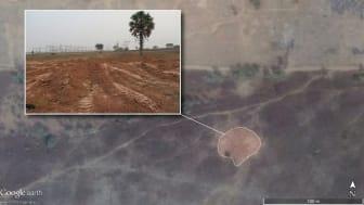 Nigeria: Militär mörkläggning av massavrättningar avslöjad