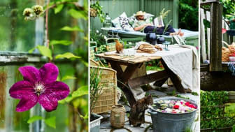 Nordiska Trädgårdar bjuder på livesändningar, trender och inspiration