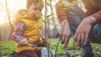 Kasvien parissa puuhaileminen yhdessä lasten kanssa vähentää ruutuaikaa ja parantaa lasten luontotietoutta sekä hyvinvointia
