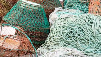 Möjligheten till ett uthålligt fiske underlättas om två fiskare som fiskar på samma art även samarbetar med varandra, visar en ny studie. Foto: Andreas Altenburger/Mostphotos