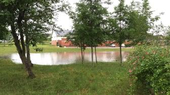 Översvämmad damm i juni 2015 på Opalvägen i Hyllinge när ett 66-årsregn föll inom loppet av fyra timmar. Foto NSVA