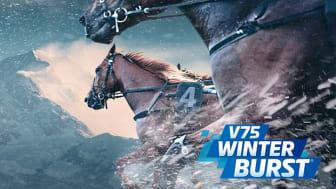 V75 Winter Burst® med final på nyårsafton