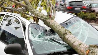 Sturmverursachte Schäden an Autos reguliert bereits die Teilkaskoversicherung.