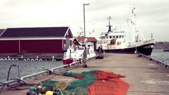 Kvoterna för 2016 års fiske i Västerhavet klara