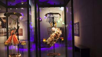 Feathers - en värld av fjädrar öppnar på Etnografiska museet