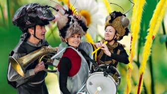 Insektsorkestern. Foto: Christer Järeslätt