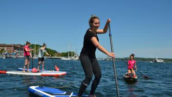 neuer Partner im Camp 247 - die SUP Schule Kiel