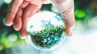 Vi måste ändra vårt sätt att producera och konsumera i Norden. De nominerade till Nordiska rådets miljöpris visar vägen. Foto: Jumpstory
