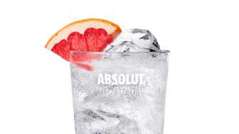 Absolut Grapefruit_Grapefruit+Tonic_OR_Soda+Highball.jpg