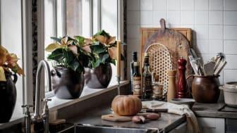 Svenskodlade växter som höststjärna, kornettblomma och begonia skapar personliga hem i höst. Foto: Åsa Myrberg