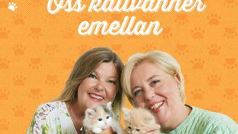 Oss kattvänner emellan - höstens måste-bok för alla kattälskare!
