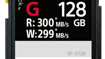 SD Karte SF-G128 von Sony_1