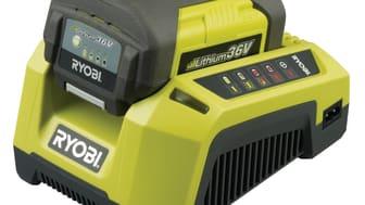 36V batteri & laddare