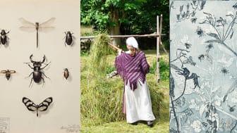 Kulturmagasinet och Fredriksdal museer och trädgårdar