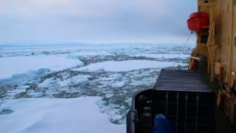 Svenska polarforskare på väg till Petermannglaciären