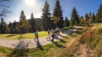 Wanderung_Wanderwochen_Gruppe_Oberwiesenthal Foto_TVE_UweMeinhold14.jpg