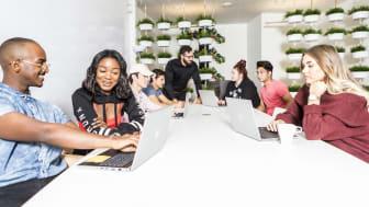 Thoren Business School Umeå växer med fler elever och levererade på samtliga punkter i Skolinspektionens tillsyn.