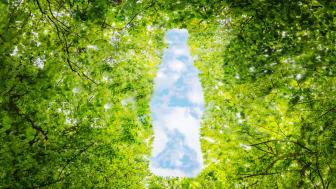 Sinebrychoffista on tullut ensimmäinen Coca-Colaa hiilineutraalisti valmistava yritys maailmassa, kun yhtiö on saavuttanut vuodelle 2030 asettamansa tavoitteen olla hiilineutraali juomatalo.