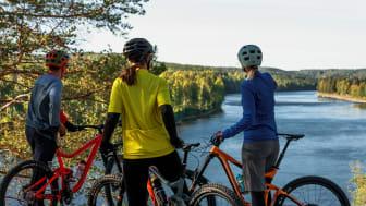 Cykling i Umeåregionen. Högupplöst. Foto Philip Avesand-Visit Umeå