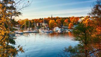 Rekordmånga båtar till salu efter en sommar i Sverige