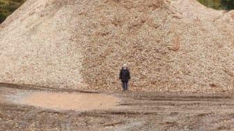 Flismaskinen kører for fuld kraft i de danske skove og problemerne med biomasse vokser